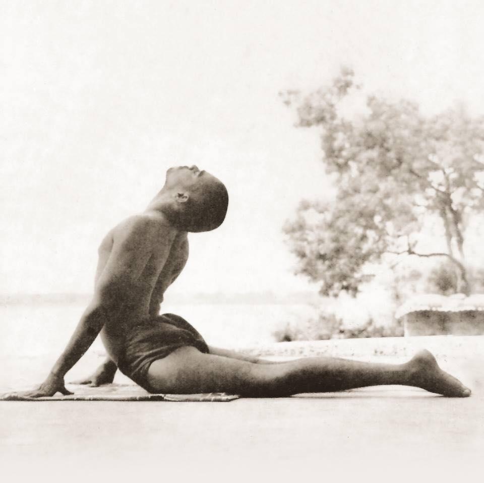 Bhujangasana - Cobra | 12 Basic Asanas | Sivananda Yoga | Yoga Warehouse