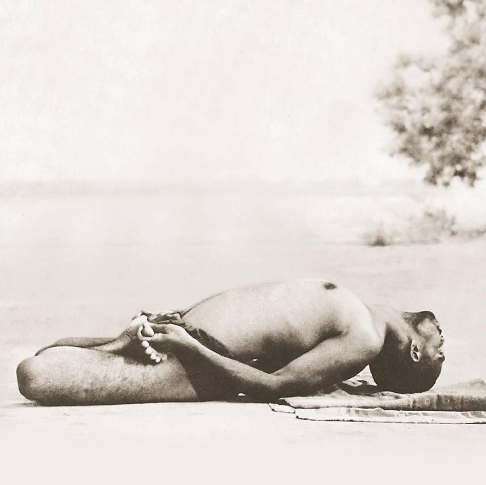 Matsyasana - Fish | 12 Basic Asanas | Sivananda Yoga | Yoga Warehouse