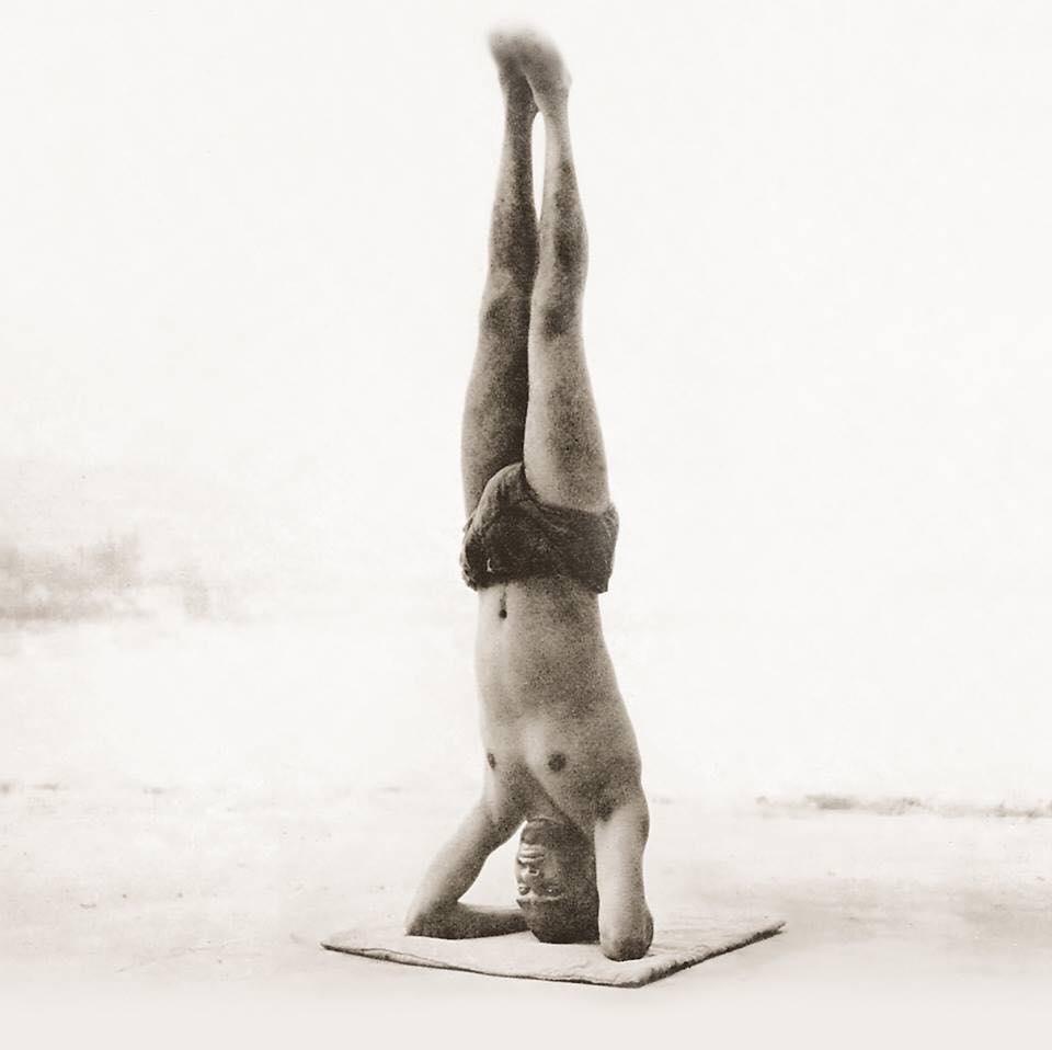 Sirsanasa - Headstand   12 Basic Asanas   Sivananda Yoga   Yoga Warehouse