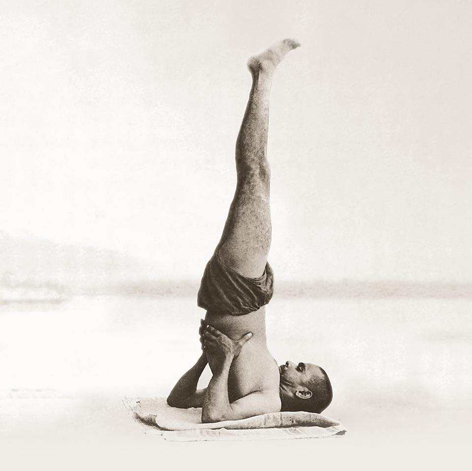 Sarvangasana - Shoulderstand | 12 Basic Asanas | Sivananda Yoga | Yoga Warehouse